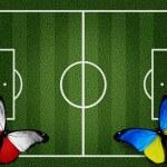 Poland ukraine flag butterflies on football field white lines on — Stock Photo #10544693
