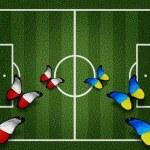 Poland ukraine flag butterflies on football field white lines on — Stock Photo #10544697