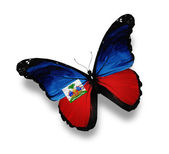Haiti flag butterfly, isolated on white — Stock Photo