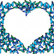 Many blue butterflies make frame of heart on white — Stock Photo #9225877