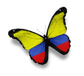 Colombian flag butterfly, isolated on white — Stock Photo