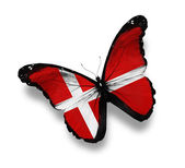Danish flag butterfly, isolated on white — Stock Photo