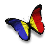 Romanian flag butterfly, isolated on white — Stock Photo