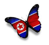 Korean flag butterfly, isolated on white — Stock Photo