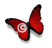 Tunisian flag butterfly, isolated on white — Stock Photo