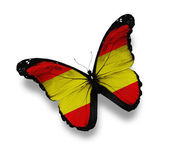 Spanish flag butterfly, isolated on white — Stock Photo