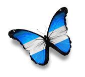 アルゼンチンの旗蝶、白で隔離されます。 — ストック写真
