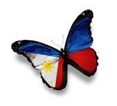 Philippine flag butterfly, isolated on white — Stock Photo