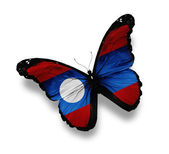 Laotian flag butterfly, isolated on white — Stock Photo