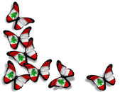Lebanese flag butterflies, isolated on white background — Stock Photo
