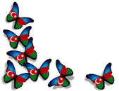 Azerbaijani flag butterflies, isolated on white background — Stock Photo