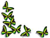ジャマイカの旗、蝶、白い背景で隔離 — ストック写真
