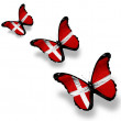 Three Danish flag butterflies, isolated on white — Stock Photo #9893558