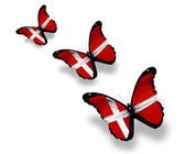 Three Danish flag butterflies, isolated on white — Stock Photo