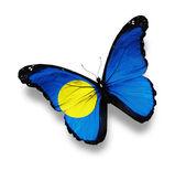 パラオの蝶、白で隔離されるの旗 — ストック写真