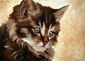 ładny kotek — Zdjęcie stockowe