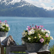 Stock Photo: Alaskan flowers on the background of the mountains