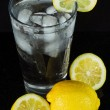 Stock Photo: Refreshing glass of ice water with lemon.