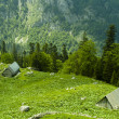 Shepherd huts in green meadow — Stock Photo