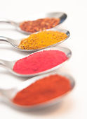 Four spices presented in teaspoons over white — Zdjęcie stockowe