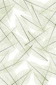 листья стебля — Стоковое фото