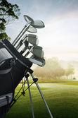 Golf-ausrüstung auf dem platz — Stockfoto
