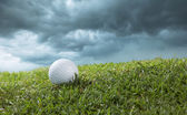 Golf ball on course — Stockfoto