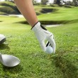 Stock Photo: Tee up