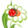 Flower with ladybird — Stock Vector