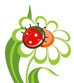 Flower with ladybird — Stock Vector