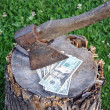 Stock Photo: Dollars and axe