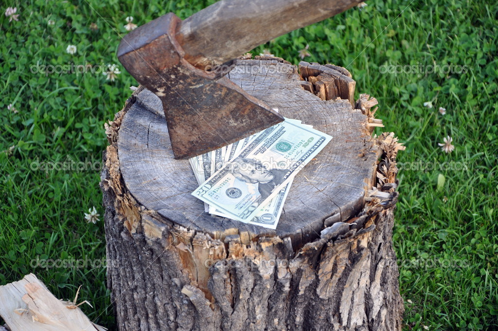  dollars is under an axe  Stock Photo #10656896