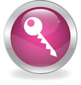 Button with a picture of the key — Stock Vector