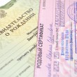 Birth certificate — Stock Photo #9132466