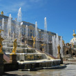 Grand Cascade Fountains At Peterhof Palace — Stock fotografie #9181991