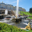 grand cascade fountains at peterhof palace — Stock Photo #9182044