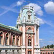 Palace of queen Ekaterina — Stock Photo #9621797