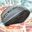 Computer mouse on money — Stock Photo
