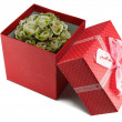 Gift red box with bow. — Foto Stock
