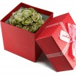 Gift red box with bow. — Stockfoto