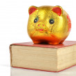 Royalty-Free Stock Photo: Piggy bank and book
