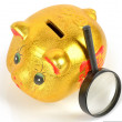 Magnifier and piggy bank with coins — Stock Photo #8817890