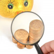 Magnifier and piggy bank with coins — Stock Photo
