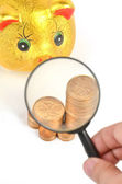 Magnifier and piggy bank with coins — Stock fotografie