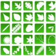 Stock Vector: Plant icons