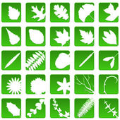 Plant icons — Stock Vector