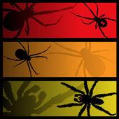 Banners de aranha — Vetorial Stock