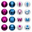 Gender icons - Stock Vector