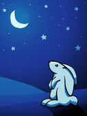 Bunny at night — Vector de stock