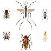 Sześć wektory owadów szkodników — Wektor stockowy